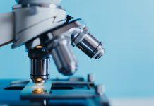 לימודי ביוטכנולוגיה – מה לומדים ואיפה?
