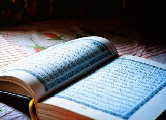 כל מה שרציתם לדעת על לימודי ערבית
